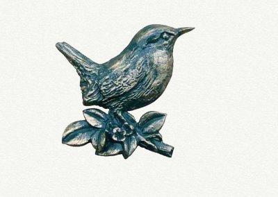 motif-wren